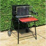 Somagic - Barbecue bois Raymond de la marque AUCUNE TOP 10 image 0 produit